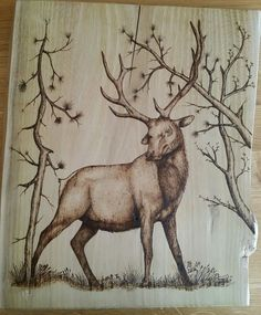 Deer #pyrography #art #woodburning #teamwork