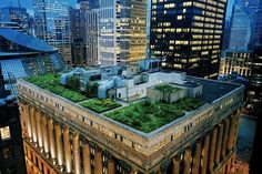 Chicago's city hall has rooftop garden with 20,000 plants