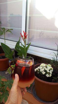 COMIDA DIA 04/04/2021 Planter Pots, Tinto De Verano, Homemade, Food, Recipes