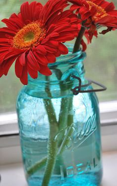 Gotta love a RED Flower in a Mason Jar