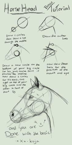 Horse Head Basic Tutorial by KajaNijssen