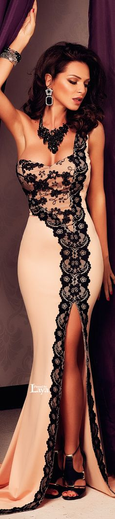Beige and Black Lace Evening Gown
