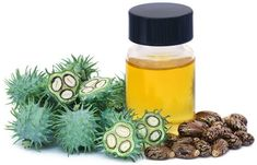 Balding Remedies Home Remedies For Eye Stye - Castor Oil - It is quite common to suffer from eye stye once in a lifetime. It causes great discomfort and an unsightly appearance. Worry not, home remedies are here to help you out Home Remedies For Baldness, Eye Stye Remedies, Hair Remedies For Growth, Hair Loss Remedies, Hair Growth, Excessive Hair Loss, Homemade Moisturizer, Grow Hair, Vaseline