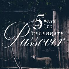 When is your Passover party? You haven't planned it yet… You might thi… When is your Passover party? Passover Traditions, Passover Recipes, Easter Traditions, Passover Feast, Passover Food, Jewish Easter, Passover And Easter, Passover Christian, Seder Meal