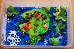 Live and play: Life Cycle of a Frog Sensory Play