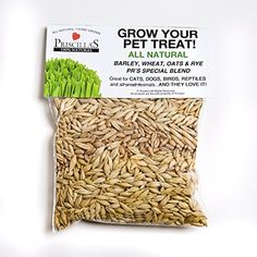 Priscillas Kitty Cat Pet Grass Seed Refill Pack Barley Oats Wheat and Rye Over 3 OZ >>> This is an Amazon Affiliate link. You can find out more details at the link of the image.