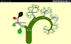 Tree of Life: Entendendo a evolução das espécies