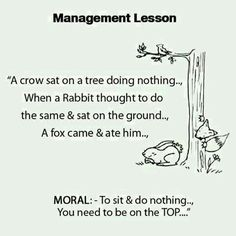 Management Lesson