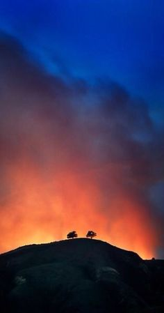 Two Trees in Ventura, California backlit by a brush fire, they did not survive. Ventura Beach, Ventura California, California Living, Ventura County, California Dreamin', Places To Travel, Places To Go, Ventura Homes, Two Trees
