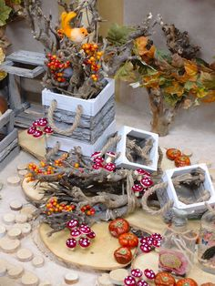 Autunno. Accessori vetrine su shopguerrini.com