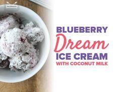 Blueberry Dream Ice Cream with Coconut Milk