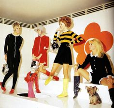 Models and a Yorkshire Terrier present creations by the designer Mary Quant in London - 1 August 1967