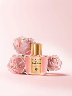 Rosa Nobile - New Fragrance by Acqua di Parma #rosanobile #acquadiparma