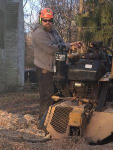 Stump Grinding Services Near Westtown PA
