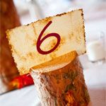 Love this idea for table numbers at an earthy wedding!