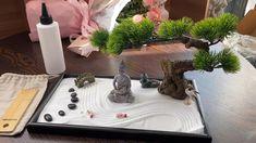Japanese Garden Zen, Mini Zen Garden, Indoor Zen Garden, Zen Rock Garden, Zen Garden Design, Buddha Garden, Buddha Zen, Desktop Zen Garden, Miniature Zen Garden