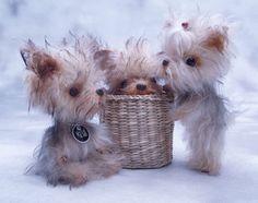 Rare OOAK Ma'Sal Creation *Baby Triplet Yorkie Puppies