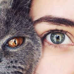"trasemc: ""The perfect eyes "" Beautiful Tumblr, Beautiful Eyes, Shooting Photo, Insta Photo Ideas, Foto Art, Cat Photography, Vintage Photography, Photo Series, Body Painting"