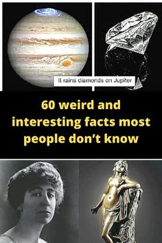 There are basic facts that people know to be true. But then there are secret facts. Well, not exactly secret. But there are fascinating facts out there that most people don't know about.