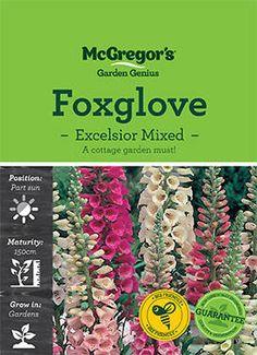 Foxglove Seed Excellsior Mixed (Digitalis Purpurea) • McGregor's Seeds, Garden, Garten, Lawn And Garden, Gardens, Gardening, Outdoor, Yard, Tuin