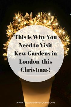 This is Why You Need to Visit Kew Gardens this Christmas! Kew Gardens in London has turned into an enchanted forest for Christmas complete with over a million lights and incredible instalments, it can't be missed! London Christmas, Christmas Travel, Holiday Travel, Christmas 2017, Christmas Lights, Christmas Ideas, Scotland Travel, Ireland Travel, Kew Gardens Christmas