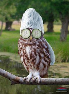 My kinda bird!