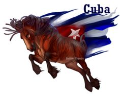 Horse Hetalia:Cuba by Moon-illusion