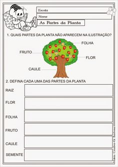 Ideia Criativa - Ensino Fundamental Atividades e Projetos Educacionais: Aula Atividade as partes da planta.