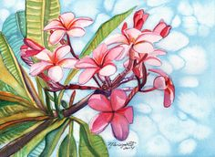 Plumeria Watercolors, Original Plumeria Paintings, Pink Plumeria, Frangipani Original Art, Kauai Plumerias, Tropical Decor, Hawaiian art