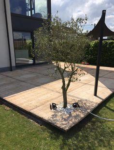 Garden Yard Ideas, Garden Spaces, Dream Garden, Home And Garden, Backyard Beach, Beach Gardens, Swimming Pool Designs, Outdoor Areas, Garden Inspiration