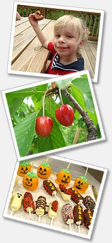 Chiles Peach Orchard, Crozet, VA