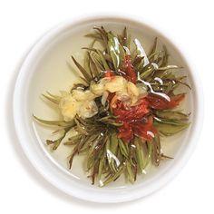 Hyson Lucky Dragon tea - Google Search