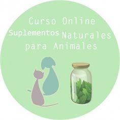 Cursos Online – Vida Natural Animal