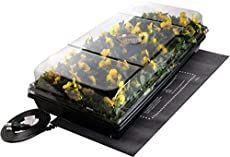 How To Use Epsom Salt For Brighter, More Beautiful Roses Smart Garden, Easy Garden, Garden Ideas, Garden Projects, Growing Peppers, Lemon Seeds, Dry Food Storage, Building Raised Garden Beds, Herbs Indoors