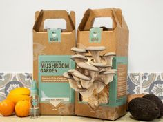 The California company Back to the Roots offers DIY types the opportunity to skip the foraging step, and just grow their own mushrooms -- up to 1 1/2 pounds of oyster mushrooms all inside a handy cardboard box in as little as 10 days. Endorsed by no less a foodie goddess than Alice Waters of Chez Panisse, this kit is a great learning opportunity for kids and a bonding activity for the whole family. (Image courtesy of Back to the Roots)(Image courtesy of Back to the Roots)