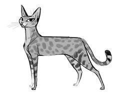 542: Savannah Cat My tablet decided to lose track of it's drivers part way through this one. Just said heck with it and trudged on. I kind of like the rough quality :)