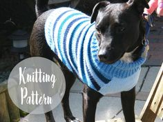 Make your dog a warm knitted sweater this month with this easy free knitting pattern. There are three sizes, small, medium and large. Knitted Dog Sweater Pattern, Dog Coat Pattern, Knit Dog Sweater, Knitting Patterns For Dogs, Free Knitting, Knitting Projects, Crochet Patterns, Large Dog Sweaters, Pet Sweaters