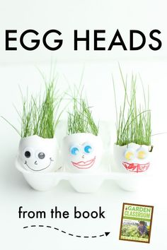 Egg Heads:  A wonder