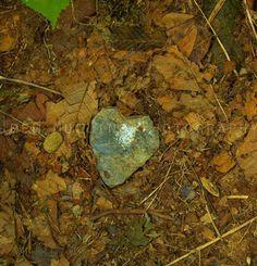 Trail Love, Trillium Gap Trail, Mt LeConte, Smoky Mountains, Tennessee, North Carolina, GSMNP