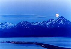 Homer, Alaska, fishing, halibut, salmon, bed & breakfasts, accommodations, tourist guide