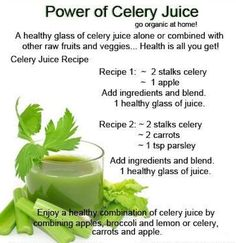 Juice Recipes -- Celery juice is highly nutritious and one of the most hydrating foods we can put in our bodies. Because it is incredibly alkalizing, it equalizes the body's PH, which is vital for peak health. Make some juice today with celery in it! Healthy Juice Recipes, Healthy Detox, Healthy Juices, Healthy Smoothies, Healthy Drinks, Smoothie Recipes, Detox Juices, Detox Drinks, Healthy Fridge