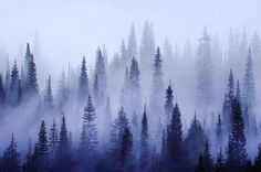 Inte bara solen som värmer #jägare #jakt #jagd #livet #vildmark #outdoors #hunting #home by jagiska