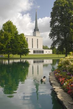 London England Temple. The Church of Jesus Christ of Latter-day Saints. #LdsTemple #MormonTemple