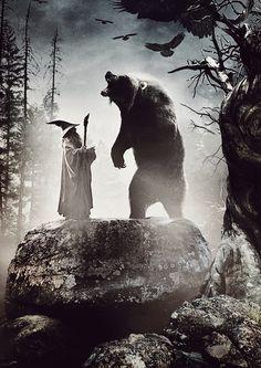 Gandalf and Beorn (The Desolation of Smaug 2013)