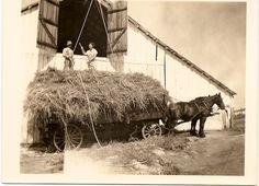 Yenni Ranch Carriage Barn