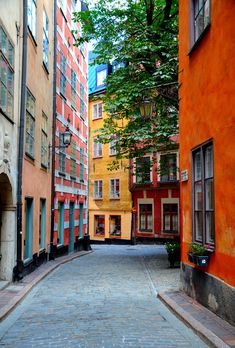 ... a nossa cor preferida. / ... our favorite color. #estocolmo #stockholm #tapportugal - The Old Town
