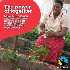 @Fairtrade America #fairtrade