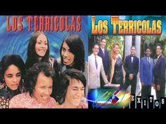 Los Terricolas Grandes Exitos Romanticos Lo Mas Escuchado mix Recuerdo - YouTube