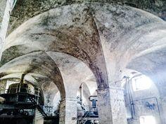 Kilián Ignác Dientzenhofer geniálně vtisknul budovám pocházejícím z 30. let 18. stol. podobu otevřeného monumentálního dech beroucího, doslova chrámového prostoru. Mohutná budova varny vystupuje z Labe a skrývá dodnes zachovalou pivní technologii, která se v této podobě dochovala jen na dvou místech v Čechách. Dnes značně zchátralý pivovar písemně doložen r. 1651 byl původně v  majeteku Velkovévodů Toskánských. Hopsa hejsa do Brandejsa!