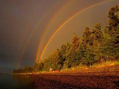 副虹は虹の外に更に虹が出現する珍しい現象ですが、見る角度(52度)によって観測可能です。しかし今回それを上回る現象、4重の副虹が現れた